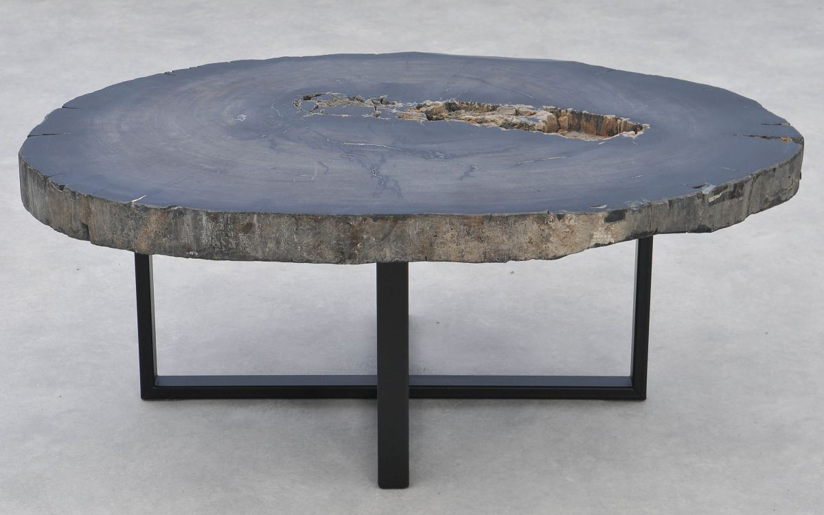 Table basse bois pétrifié 37271