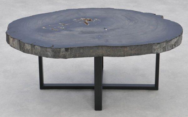 Table basse bois pétrifié 37283
