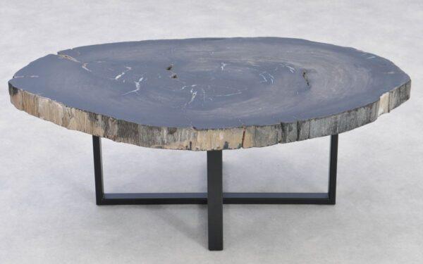 Table basse bois pétrifié 37285