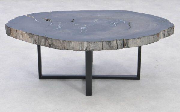 Table basse bois pétrifié 37286