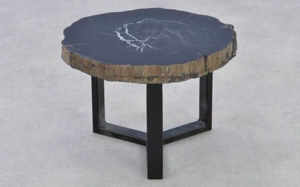 Table basse bois pétrifié 37291