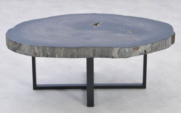 Table basse bois pétrifié 37371