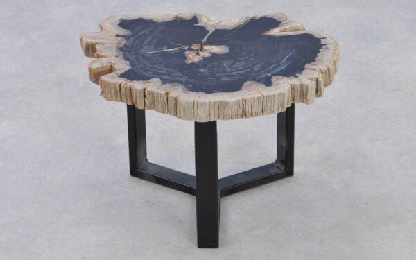Table basse bois pétrifié 37372