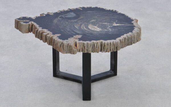 Table basse bois pétrifié 37375