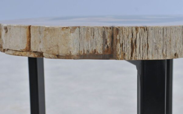 Table basse bois pétrifié 37377