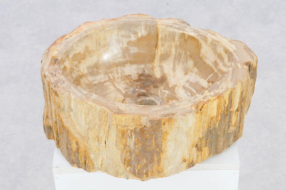 Waschbecke versteinertes Holz 37329