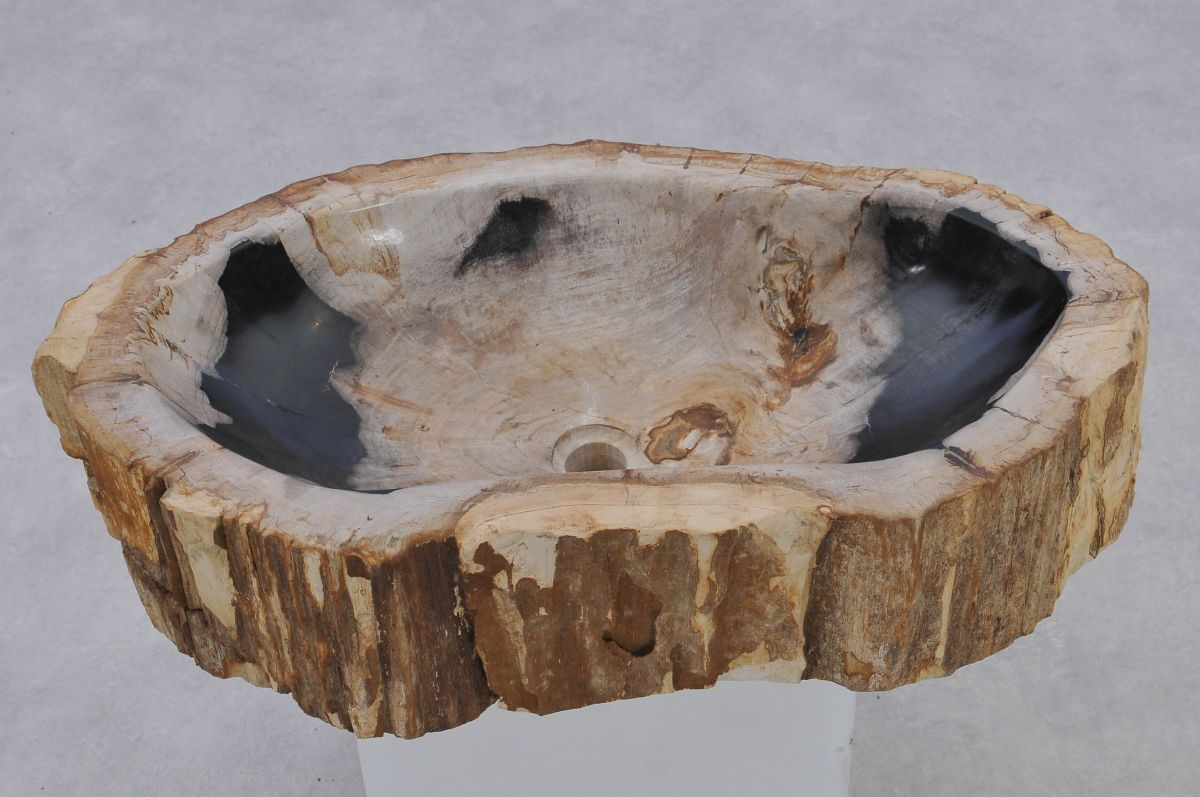 Waschbecke versteinertes Holz 37351