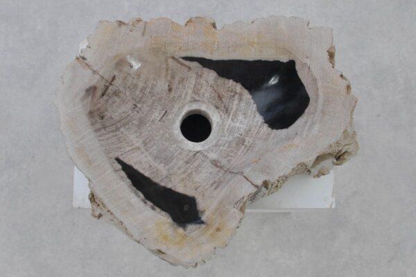Waschbecke versteinertes Holz 37367