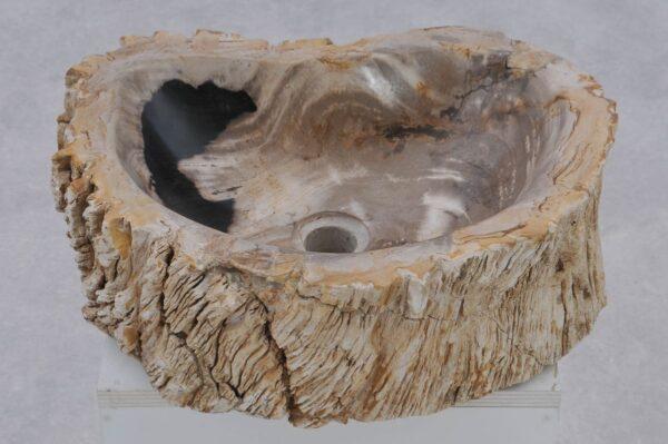 Waschbecke versteinertes Holz 37368