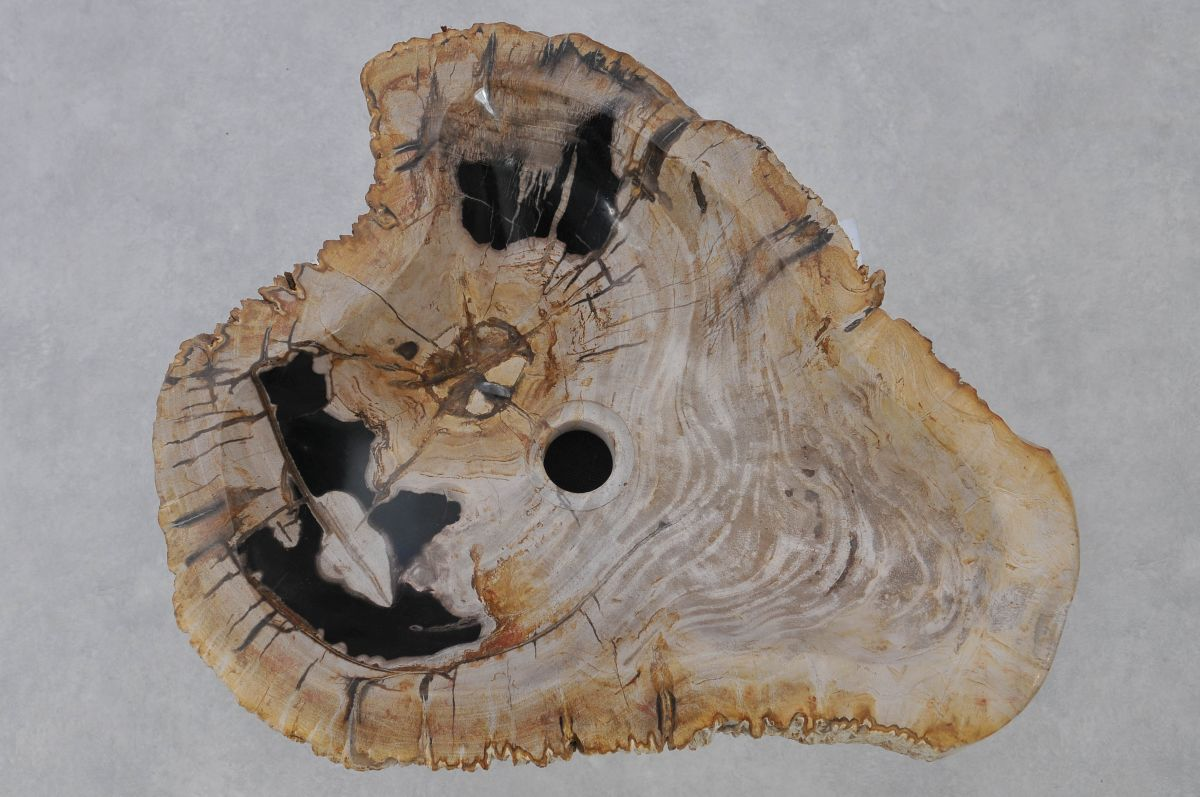 Wastafel versteend hout 37323