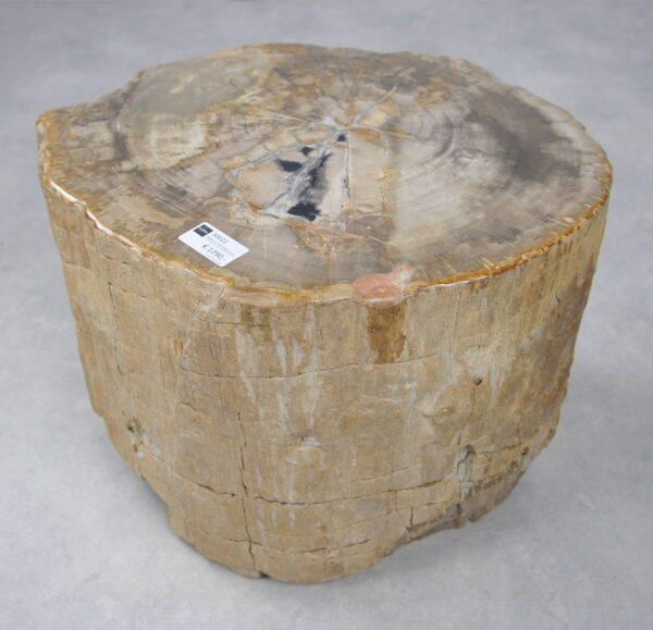 Beistelltisch versteinertes Holz 30022