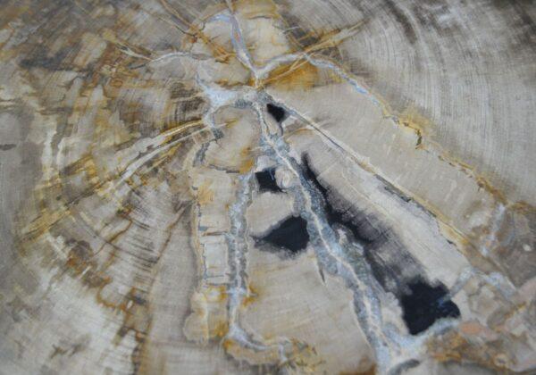 Table d'appoint bois pétrifié 30022